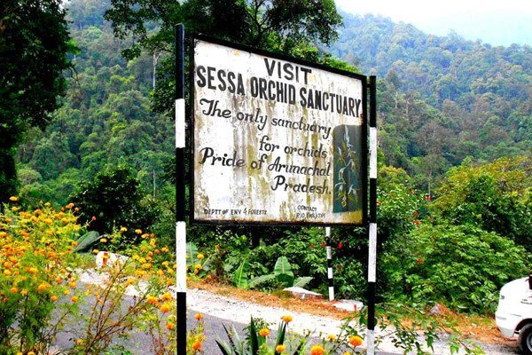 Best Place To See In Bhalukpong-Sessa Orchid Sanctuary