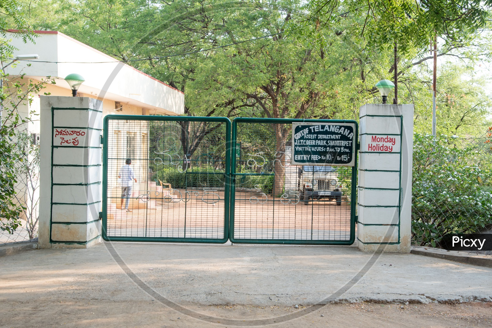 Shamirpet Deer Park in Telangana Wildlife Tourism