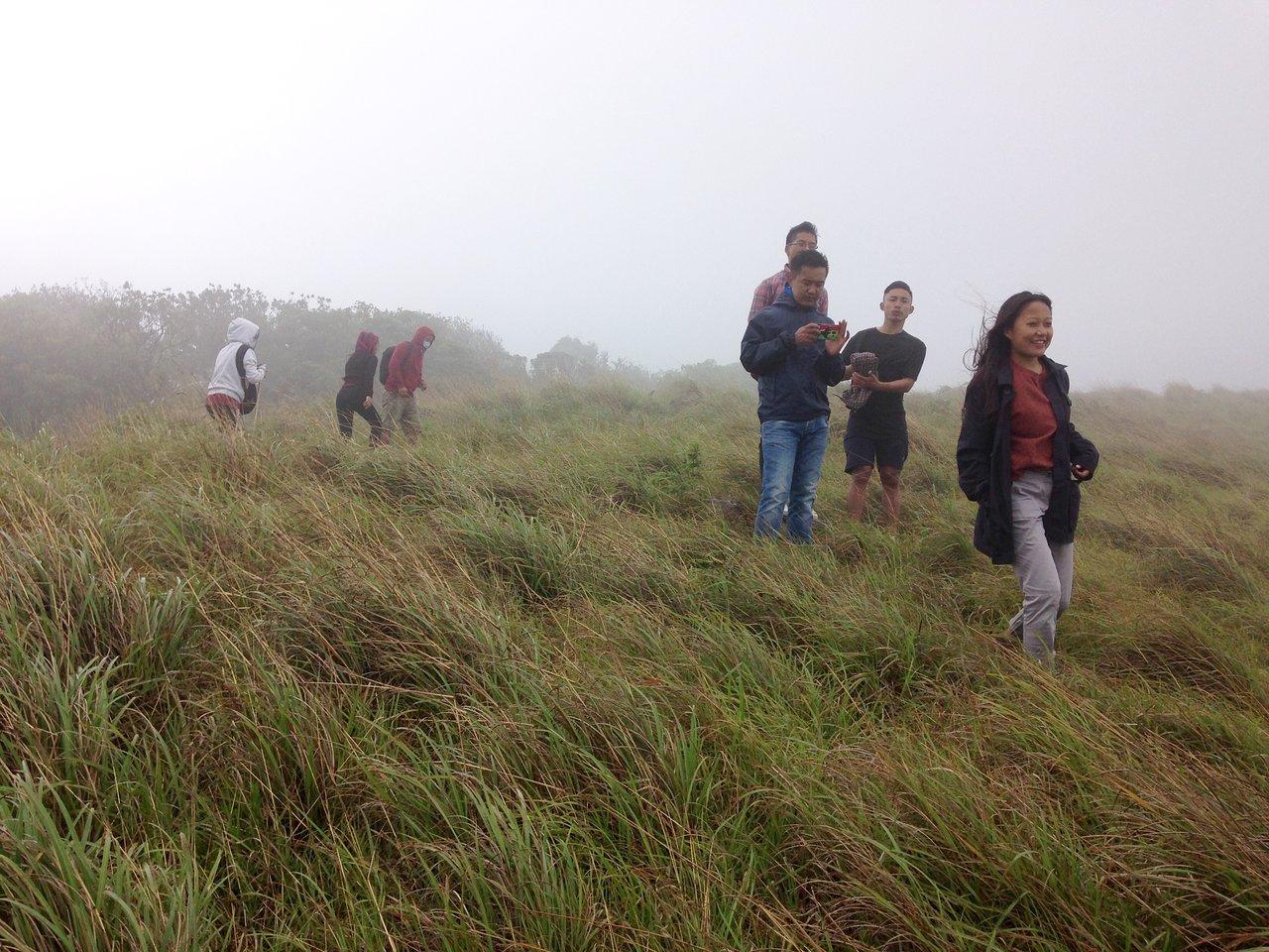 Amazing Hill Station to Visit in Manipur-Shirui kashung Peak