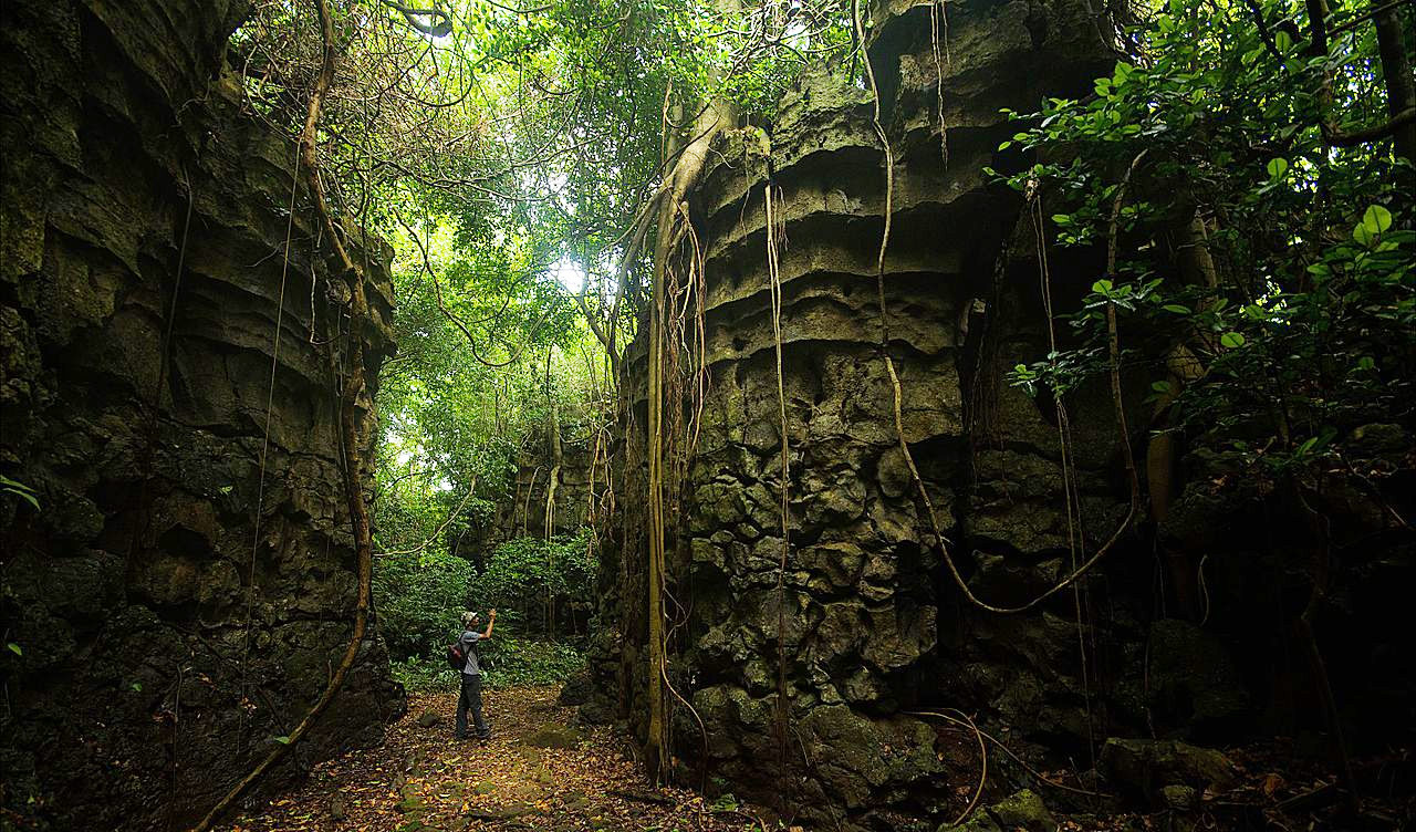 Siju Cave - Amazing Attraction to Visit Near Nokrek National Park