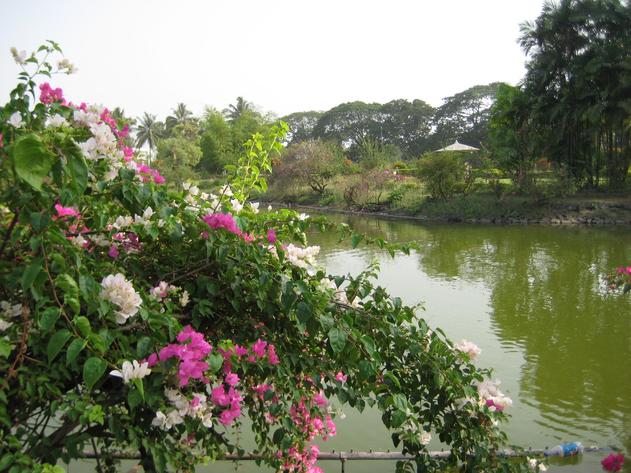 Silvassa Vanganga Lake Weekend Getaway Near Ahmedabad