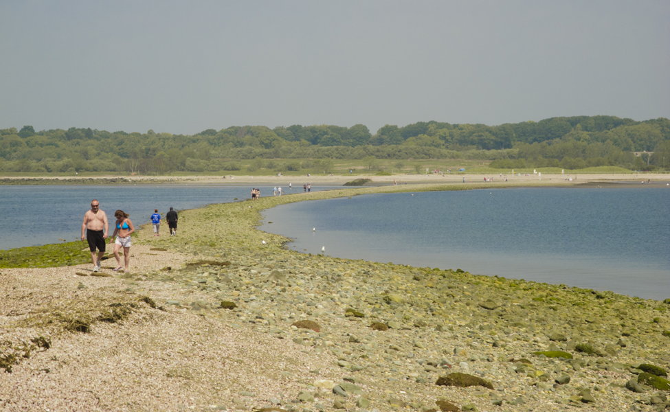 Must-Visit Attraction of Connecticut-Silver Sands State Park