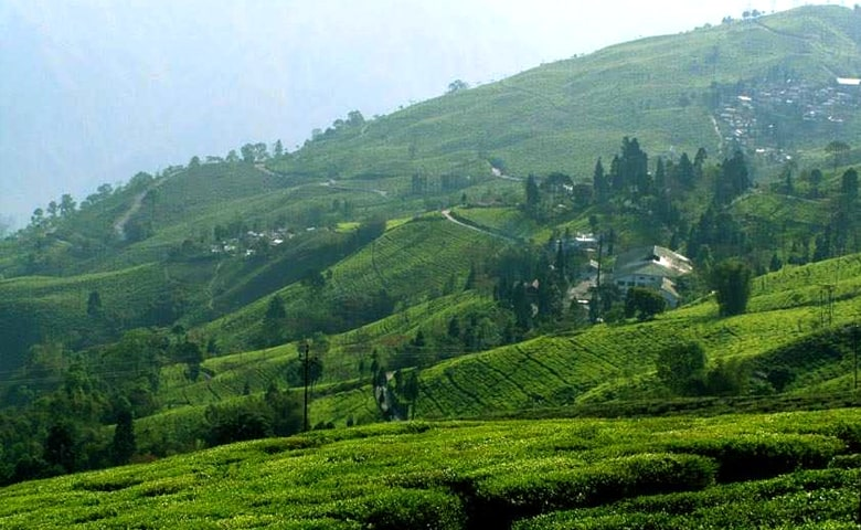 Things Which Every Traveler Must Do In Mirik - Soaking in the Beauty of Bunkulung