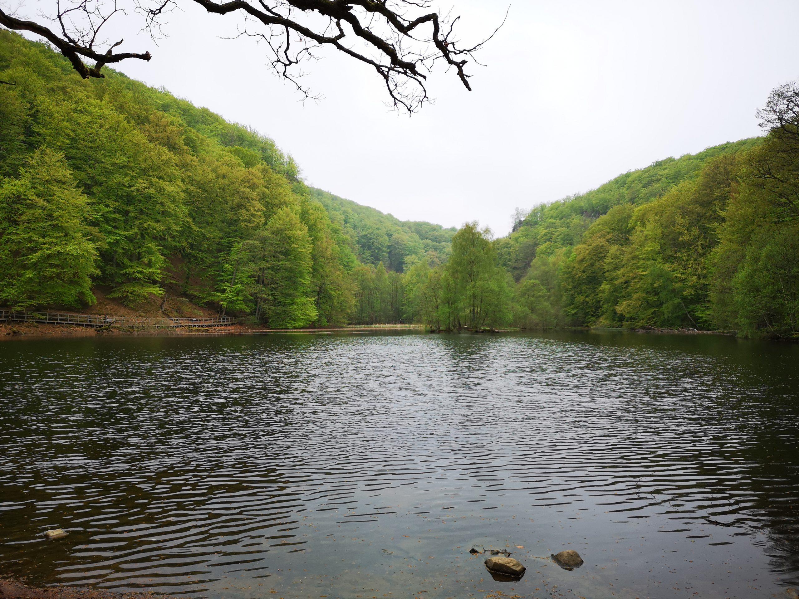 Soderasen National Park: Popular Tourist place to Visit in Sweden