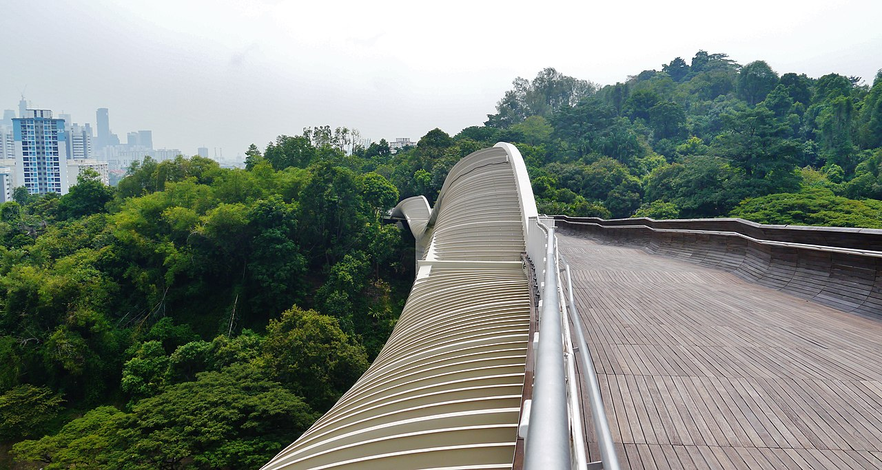 Best Alternative Things To Do In Singapore-Experience The Undulating Curves At The Southern Ridges