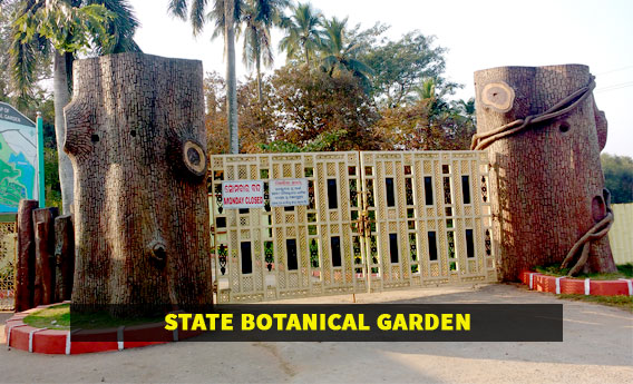 Top Place To Visit In Cuttack-State Botanical Garden