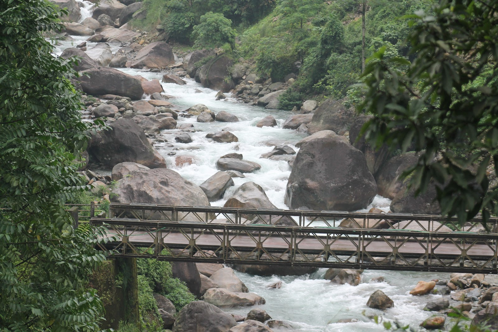 Super Destination in North Bengal-Suntalekhola