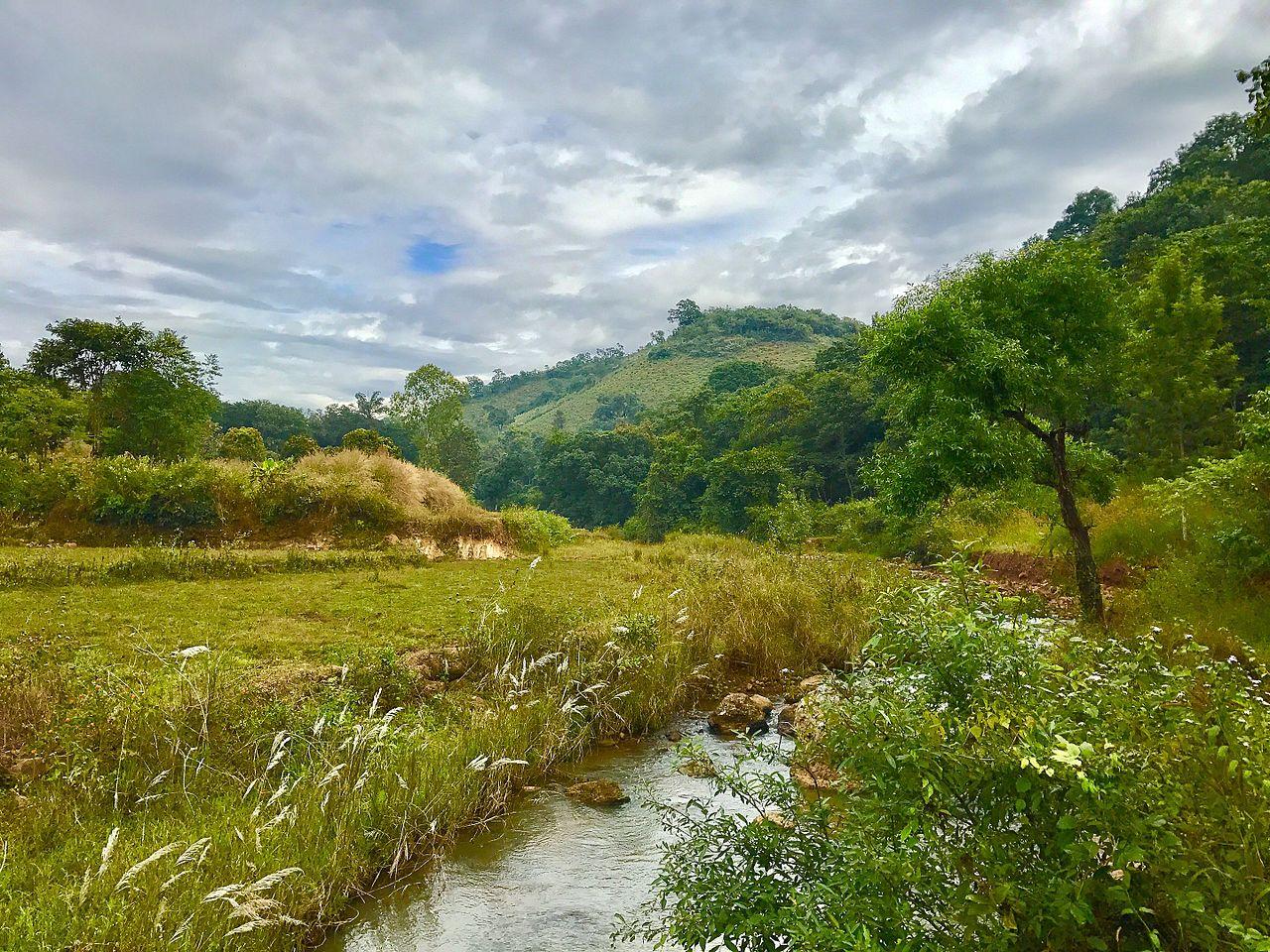Amazing Place to Visit in Lambasingi-Susan Garden