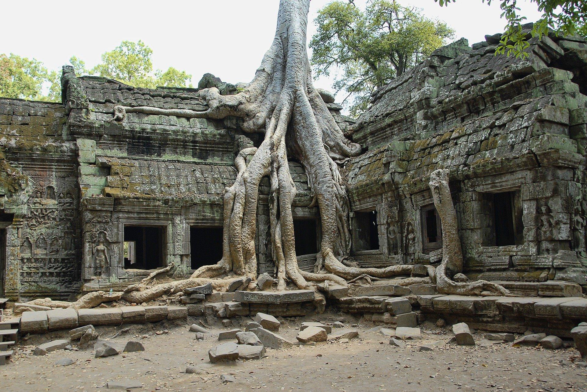 Top Temple in Cambodia-Ta Prohm