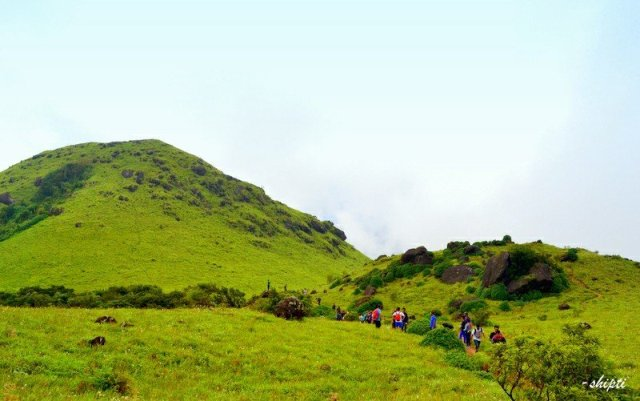 Tadiandamole - Main Attractions Of Coorg Scotland of India