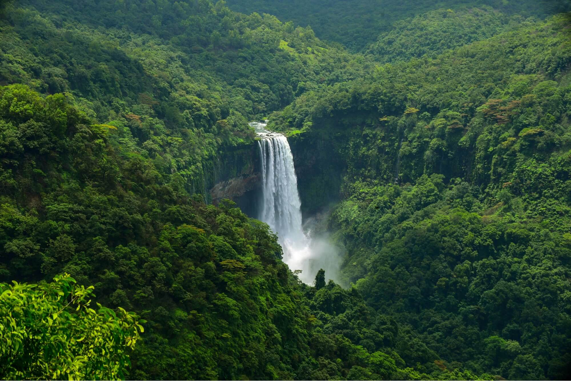Top 10 Trekking Trails in Goa
