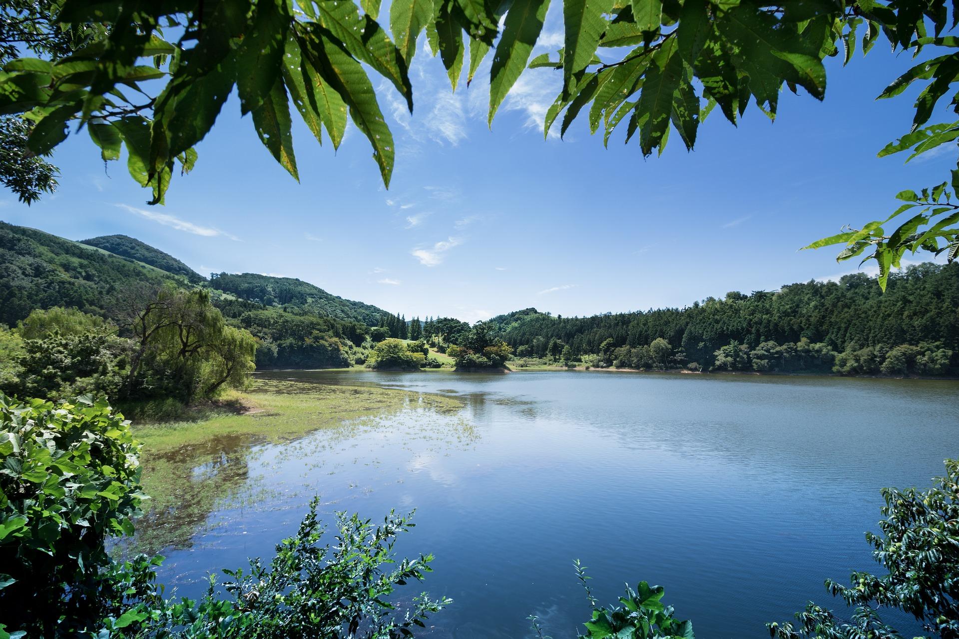 Best Place to Visit in Lambasingi-Thajangi Reservoir