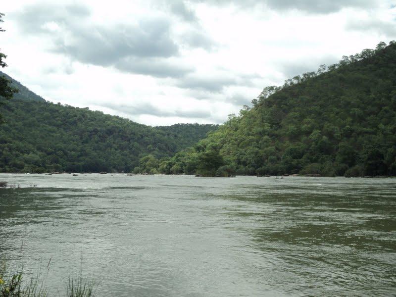 The Cauvery Wildlife Sanctuary Timings