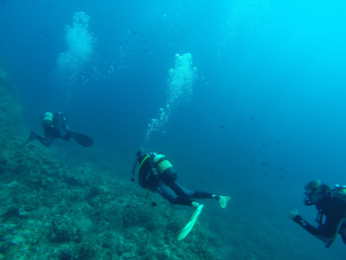 Amazing Location For Scuba Diving in San Antonio City-The Flower Garden