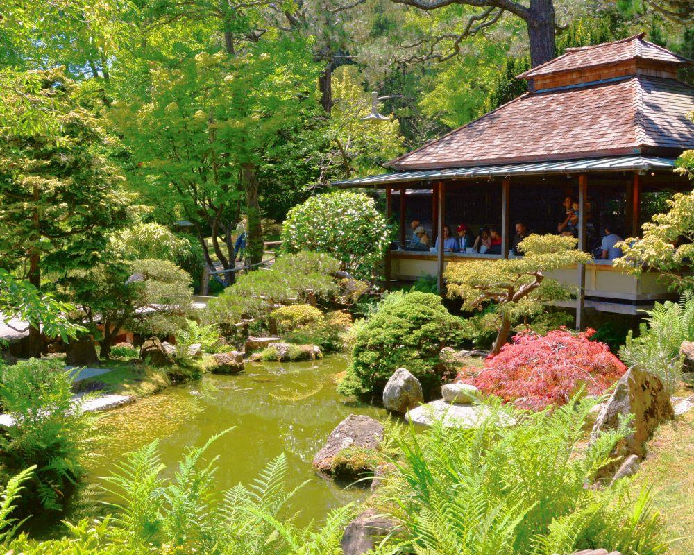 Touring The Oldest Japanese Tea Garden in San Francisco