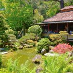 Touring The Oldest Japanese Tea Garden in San Francisco