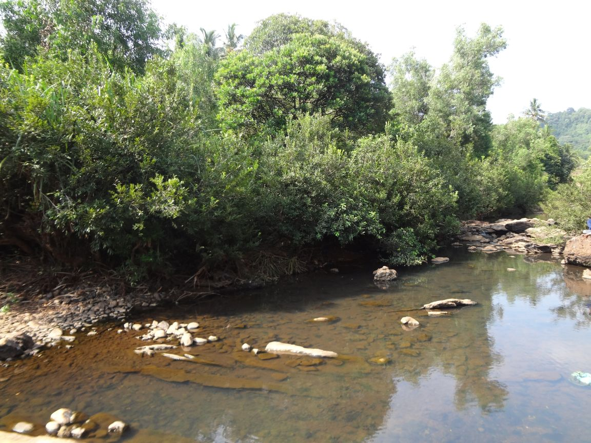 Place to Visit Nearby Maravanthe Beach-The Sowparnika River