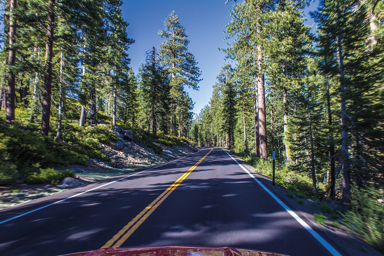 Top-Rated Place to Visit in Yosemite-The Tioga Road