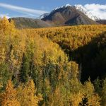 Thunderbird Falls - Scenic Hiking Trails In Anchorage You Should Not Miss