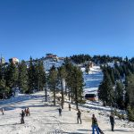 Timber Ridge Ski Resort - Ski Resort in Michigan
