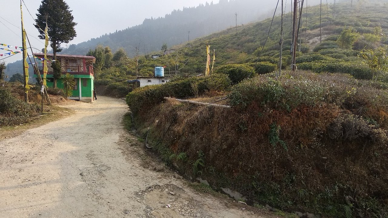 Sightseeing Spot to See in Pedong-Tinchuley View Point