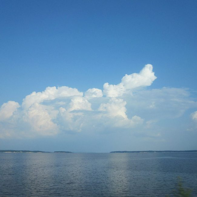 Toledo Bend Reservoir - Top-Rated and Popular Lake For Tourists in Louisiana