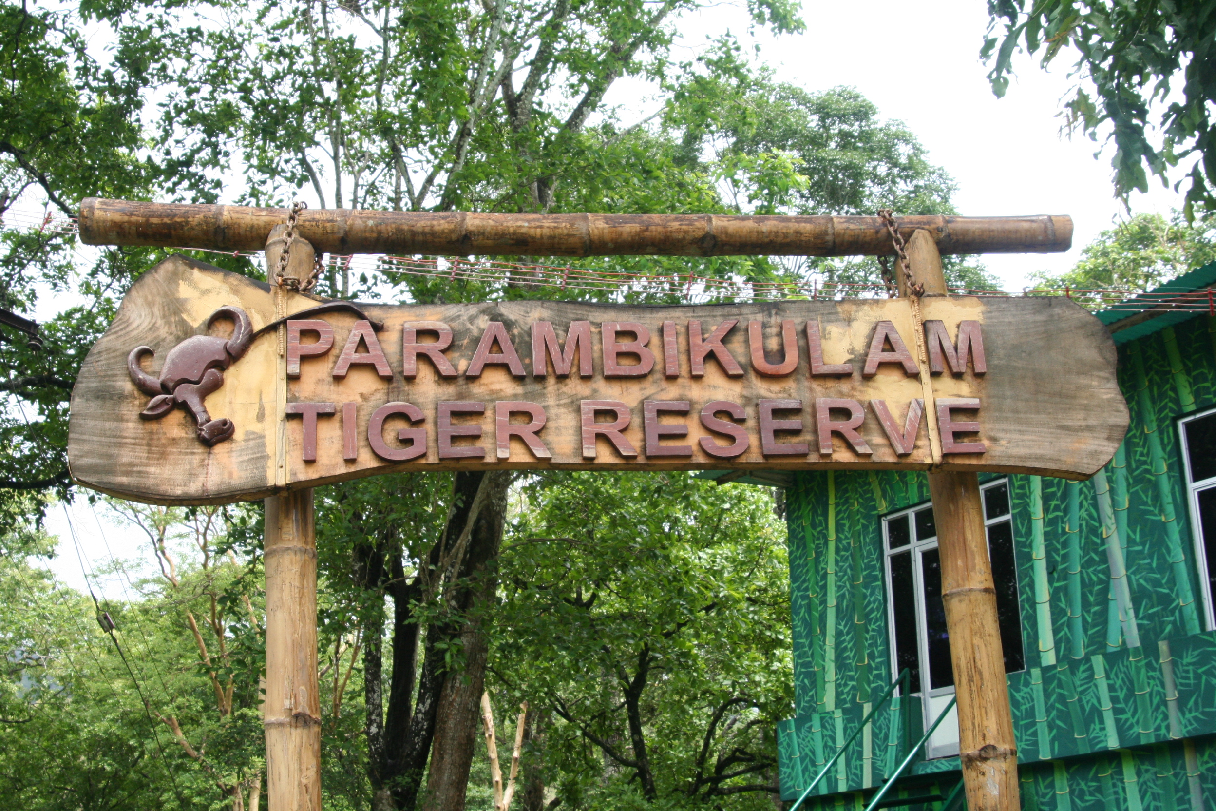 Best Place In Tamil Nadu-Trekking at Parambikulam