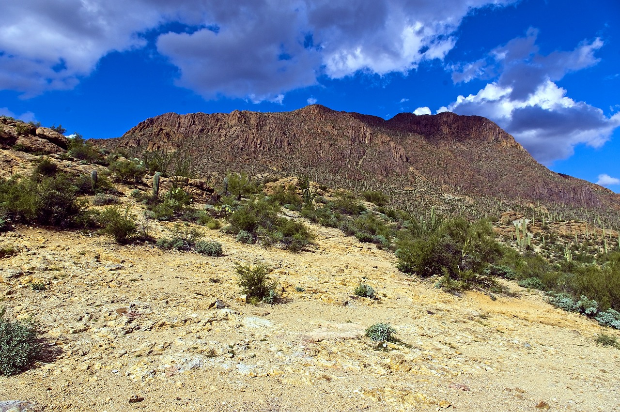 Sight-seeing Place To Visit In Tucson-Tucson Mountain Park