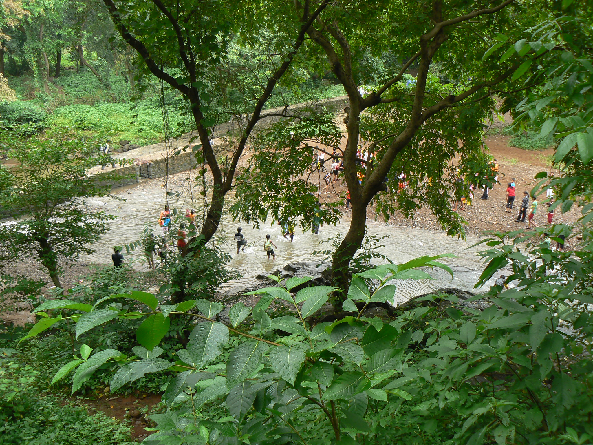 Best Place to Visit Near Bassein Fort-Tungareshwar Wildlife Sanctuary