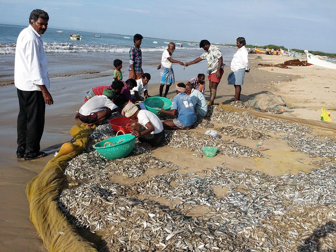 Tuticorin Beach in Tuticorin