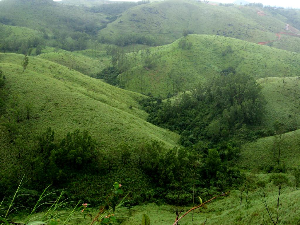 Top Offbeat Place in Kerala-Vagamon, Idukki