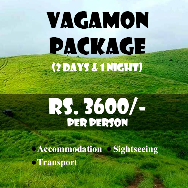 Vagamon Tour Package