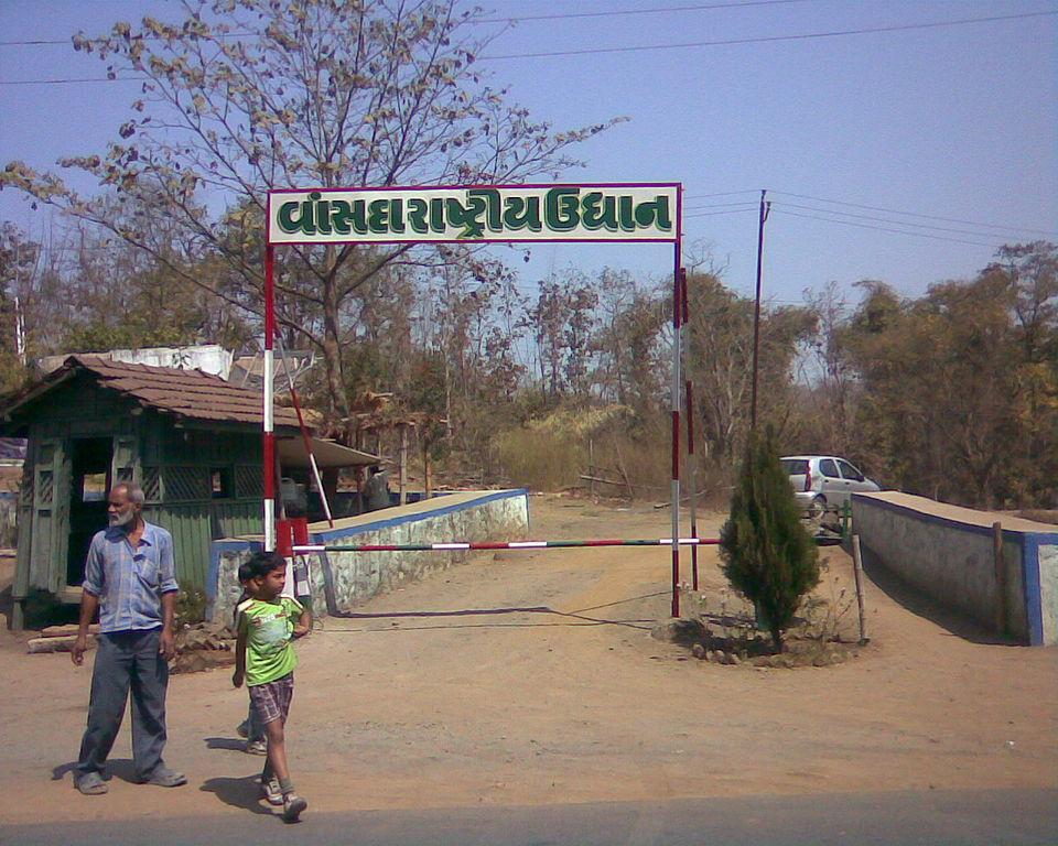 Weekend Destination from Surat-Saputara, Vansda National Park