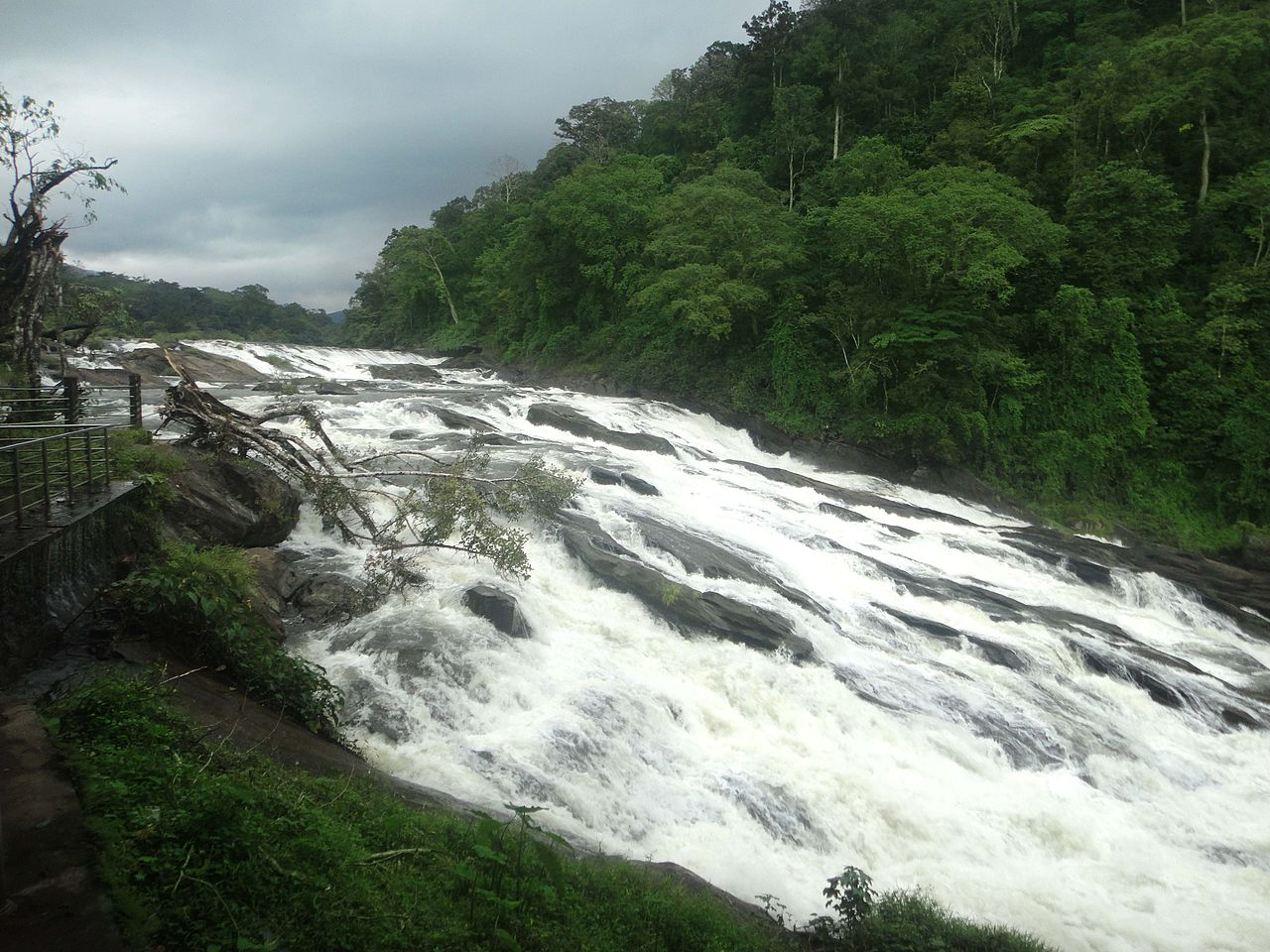 Amazing Waterfall in Kerala-Vazhachal Falls, Thrissur