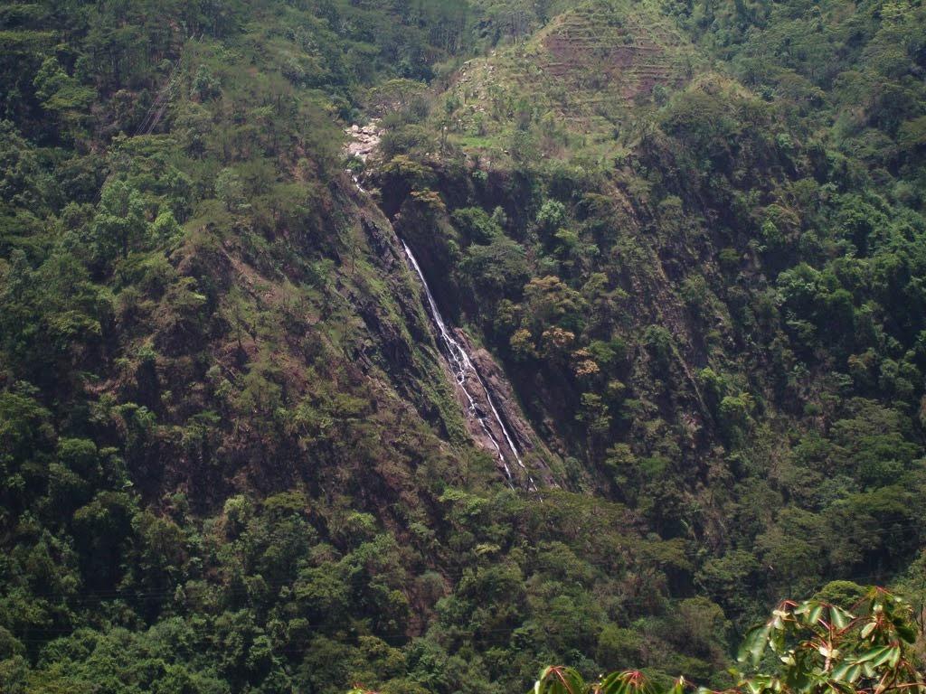 Must Visit Place Near the Ward Lake-Bishop Falls