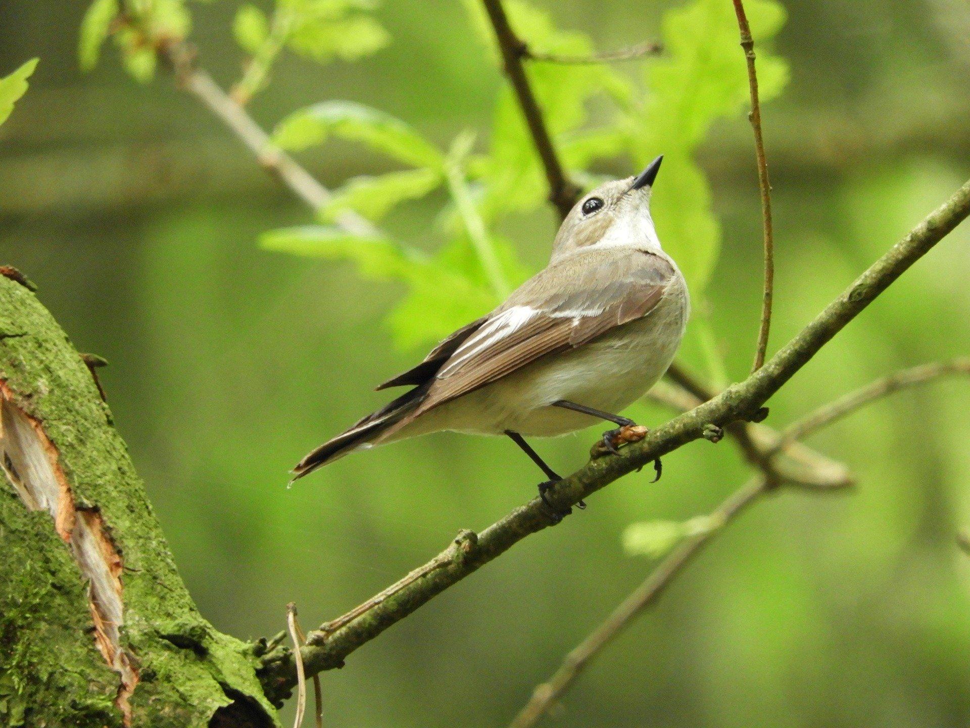 Visit Hingolgadh Nature Education Society