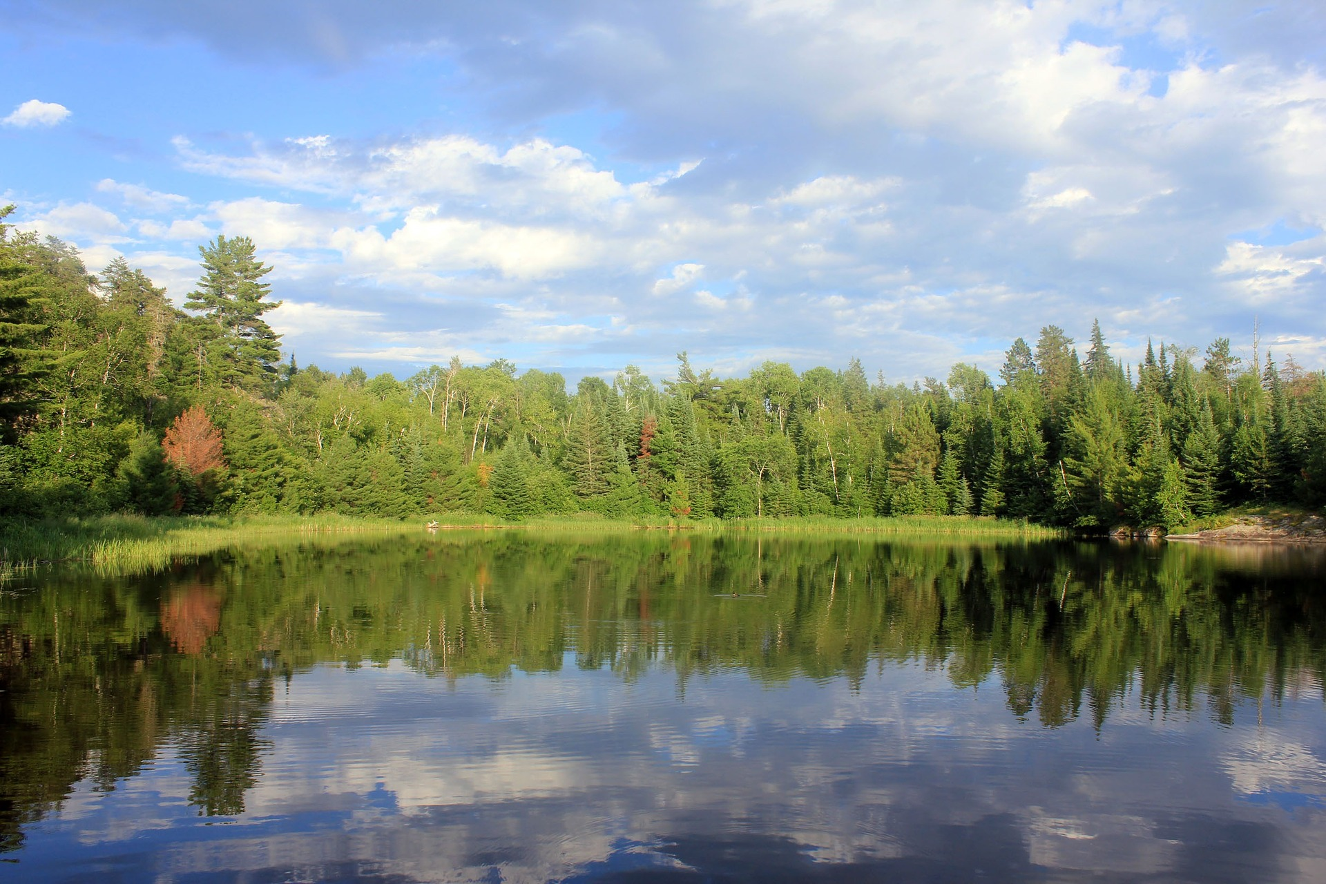 Amazing Destination to Visit In Minnesota-Voyageurs National Park