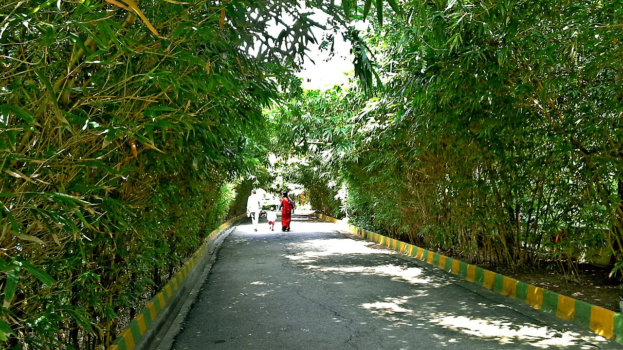 Beautiful Place to Visit In Vizag-VUDA Park