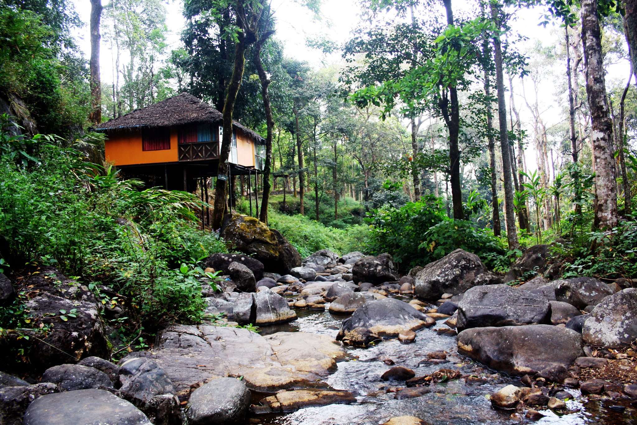 Popular Place Near Rivers and Lakes in Kerala-Vythiri