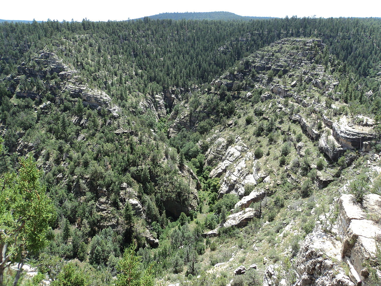 Amazing Place To Visit In Flagstaff-Walnut Canyon National Monument