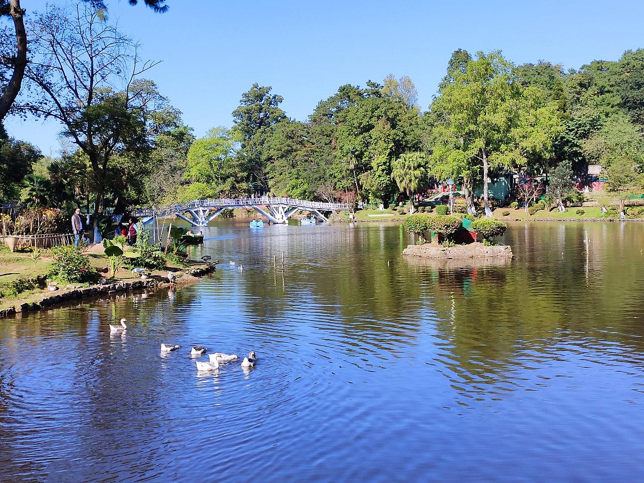 Wards Lake - Shillong