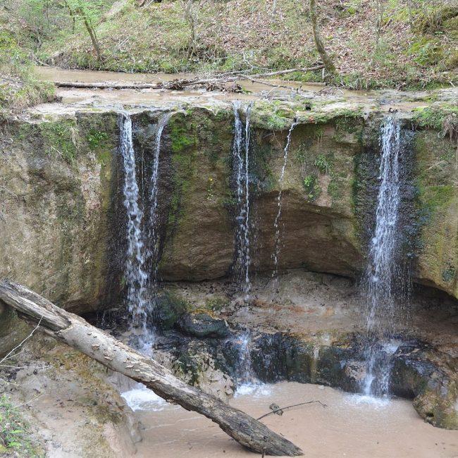 Waterfalls in Clark Creek Natural Area - Top-Rated Waterfall in Louisiana