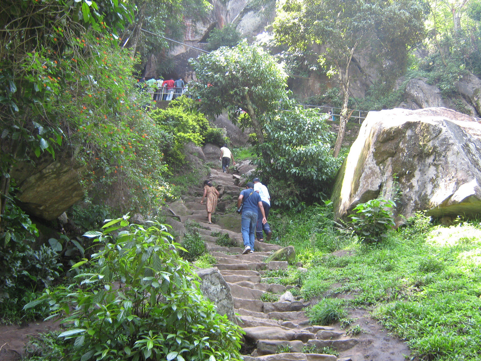 Top Place Near Rivers and Lakes in Kerala-Wayanad