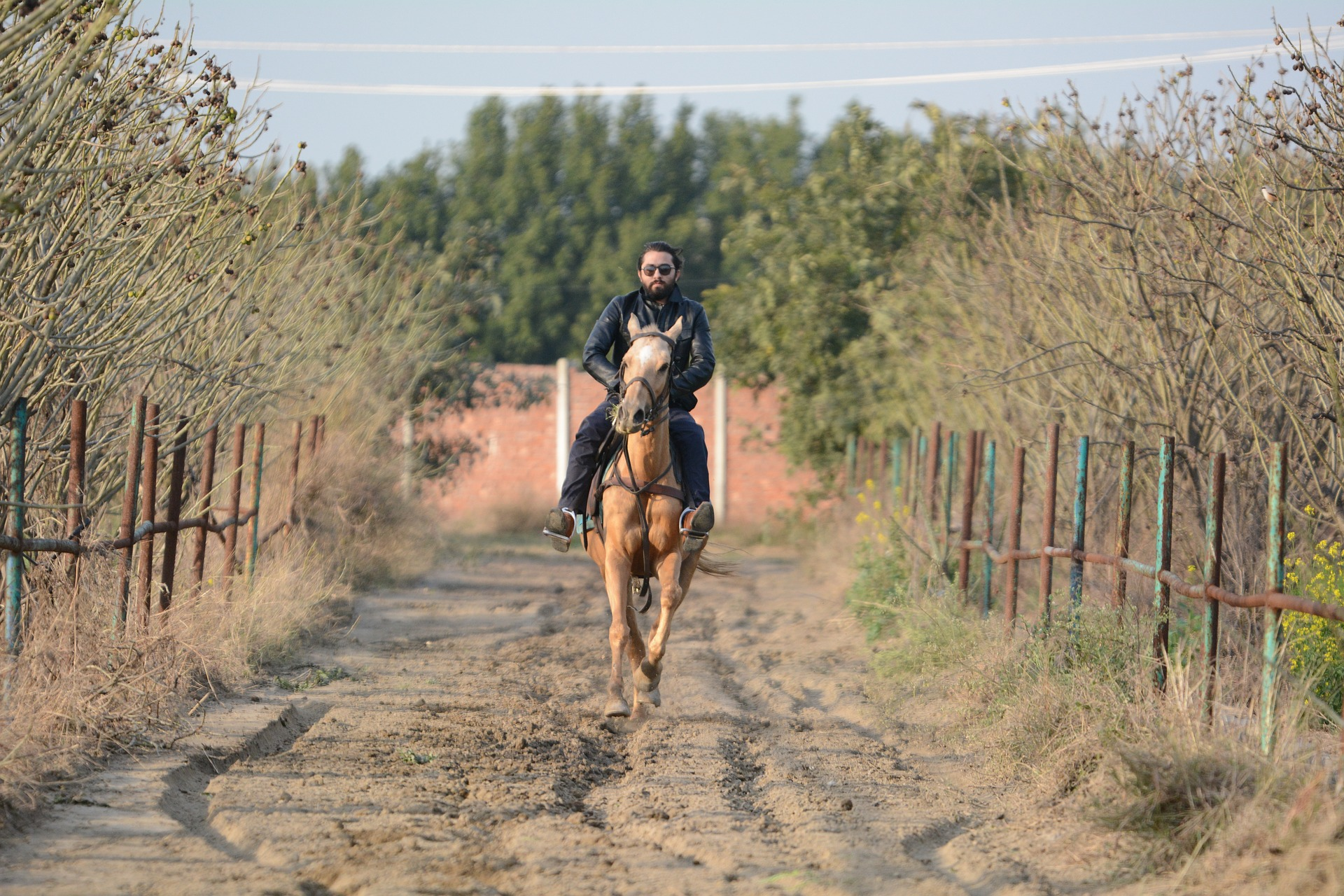 What Are The Best Activities to Do In Gopalpur-Horse Riding