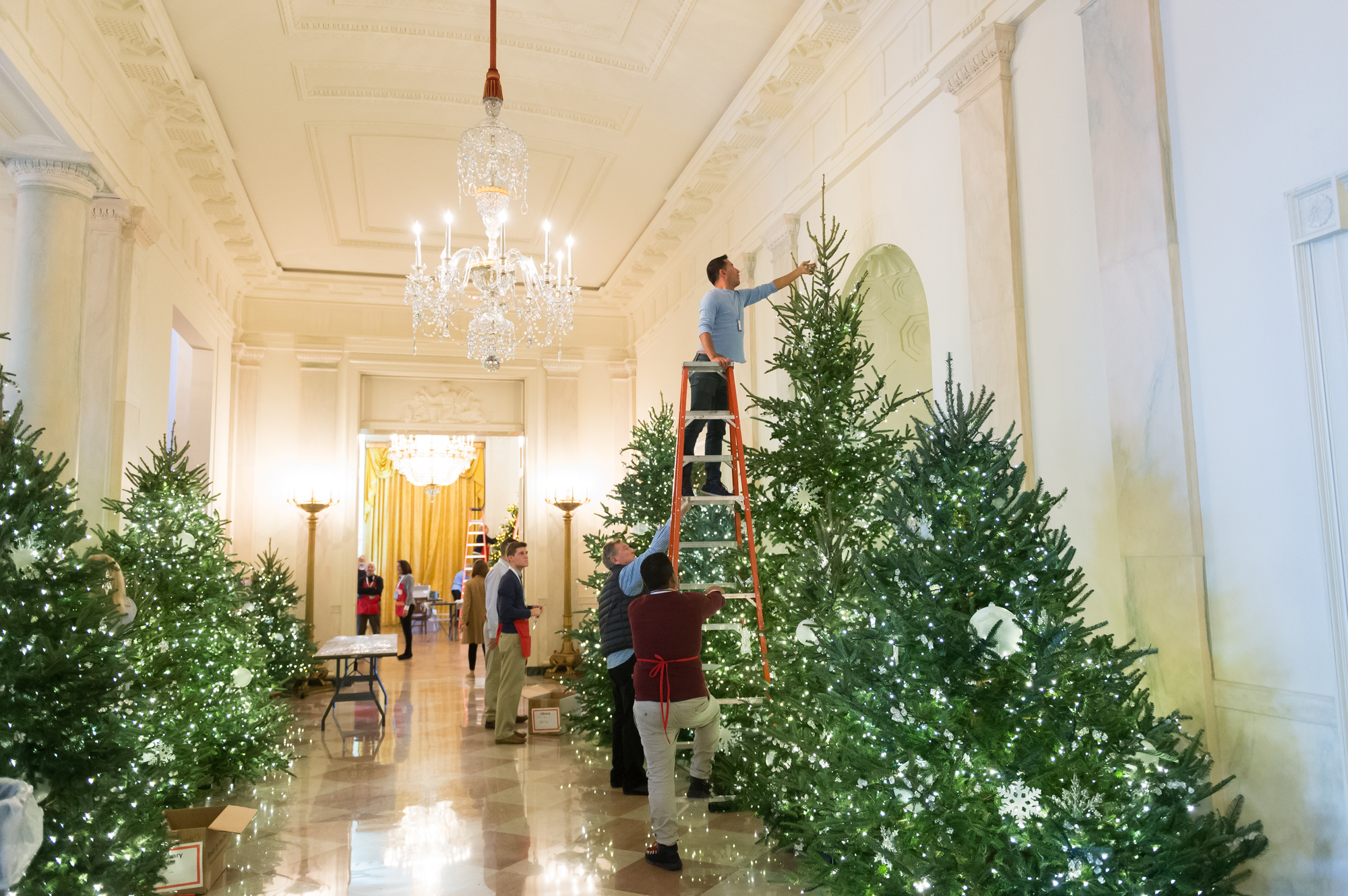 White House Christmas Ornaments - Best Things to Buy in Washington DC