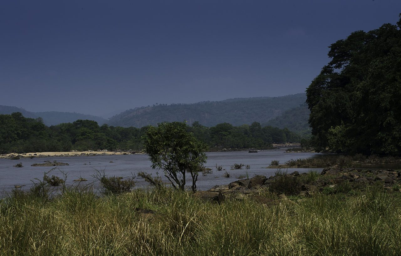 Why Should You Visit the Cauvery Wildlife Sanctuary, Muthathi?