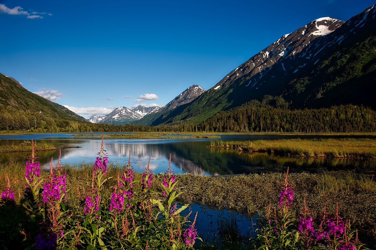 Camping in Anchorage: Spend Your Weekend At These 10 Beautiful Camping Locations in Anchorage