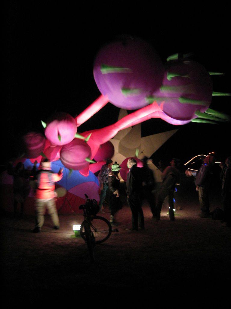 Witness Burning Man in D.C, Washington DC