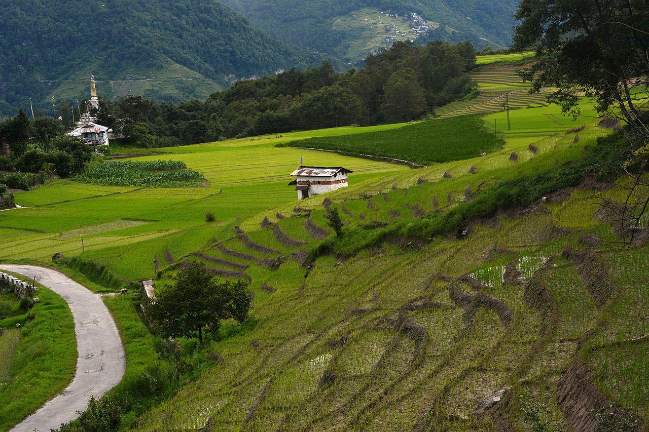 Magnetic Attraction of Arunachal Pradesh-Ziro