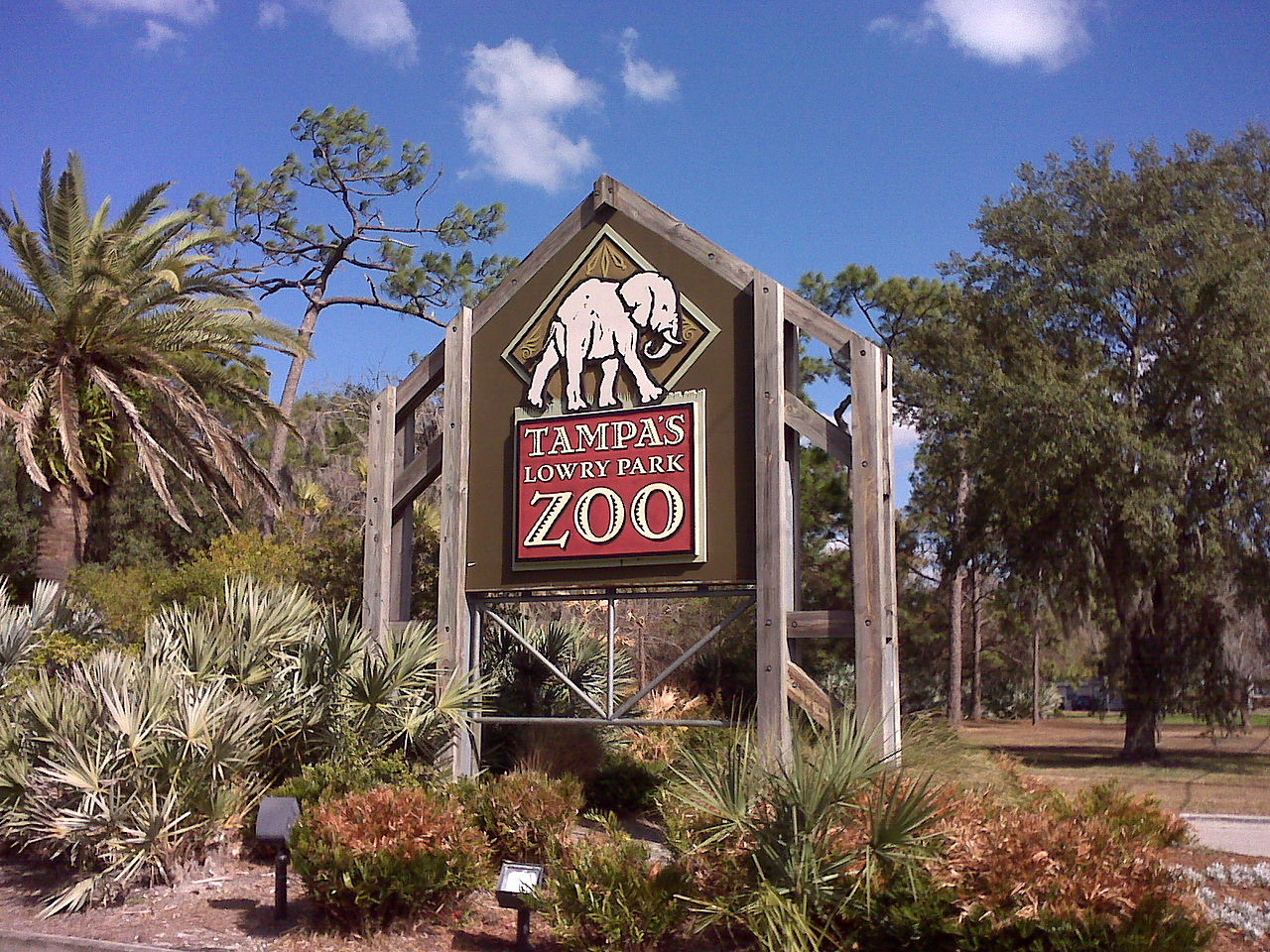 Sight-Seeing Destination in Tampa-Zoo Tampa at Lowry Park